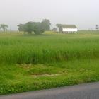 Rural living