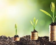 Finding essentials for building profitable portfolio