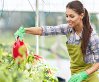 Woman learning what to plant in her garden this spring