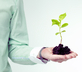 Businessperson holding a plant