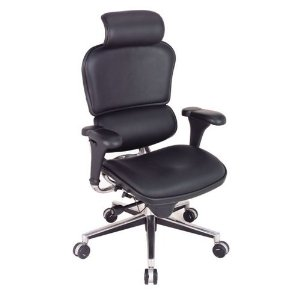Best If a leather office chair is your preferred style then the Raynor Eurotech Ergohuman LEERG office chair is the choice for you