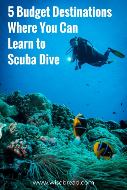 5 Budget Destinations Where You Can Learn to Scuba Dive