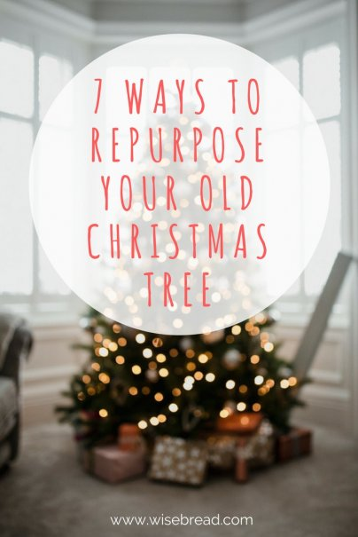 7 Ways to Repurpose Your Old Christmas Tree