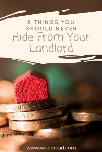 8 Things You Should Never Hide From Your Landlord