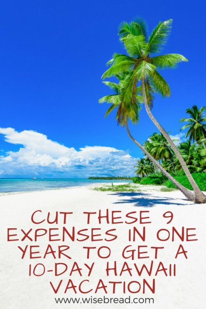 Cut These 9 Expenses in One Year to Get a 10-Day Hawaii Vacation