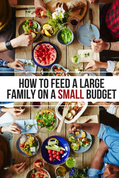 How to Feed a Large Family on a Small Budget