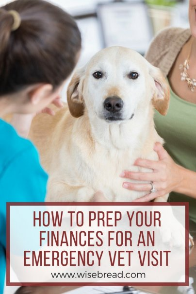 How to Prep Your Finances for an Emergency Vet Visit