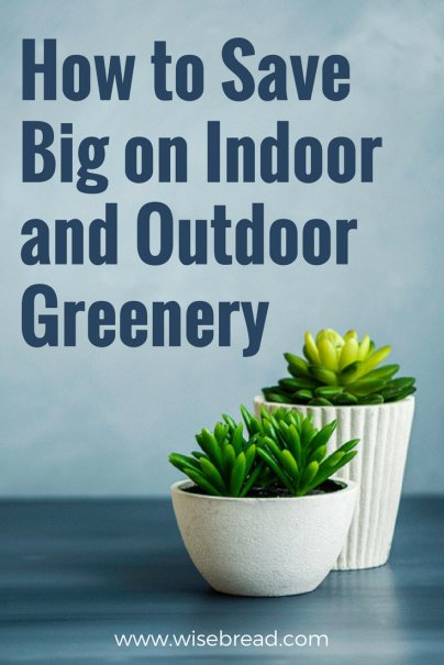 How to Save Big on Indoor and Outdoor Greenery