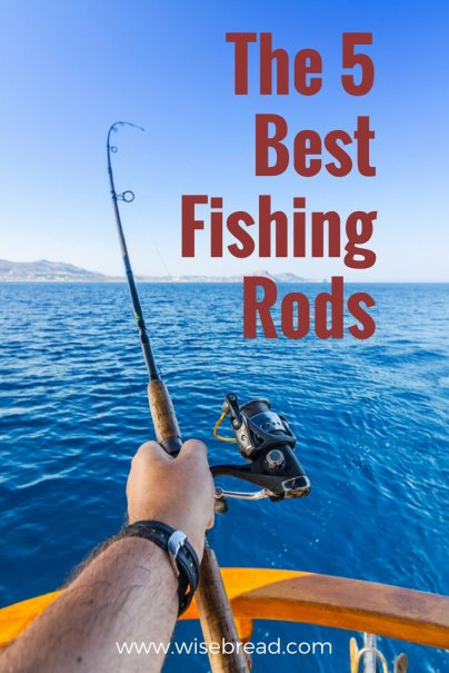 The 5 Best Fishing Rods