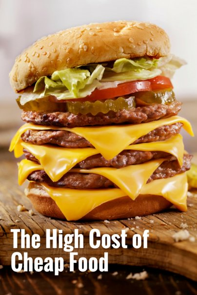 The High Cost of Cheap Food