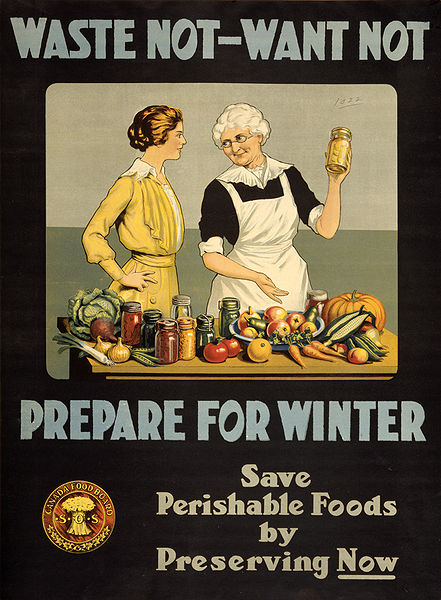 Waste Not, Want Not -- WW1 Poster