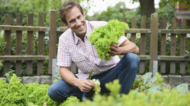 7 Fresh Veggies You Can Grow From Kitchen Scraps