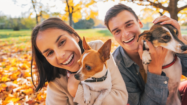7 Personal Finance Tips for Animal Lovers