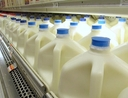 Milk at the store