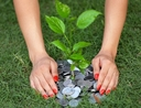 Woman planting money tree