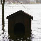 house underwater