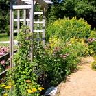 Bench in an herb garden