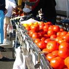Scene at a farmers market