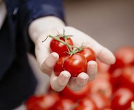 Woman finding ways to use up summer tomatoes