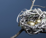 Nest Made of American Currency Horizontal
