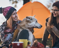 Two girls and a dog on camping