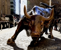 Wall Street bull in New York City