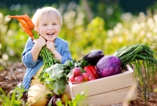 Little boy playing in garden for vegetables