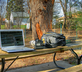 outdoor freelance office