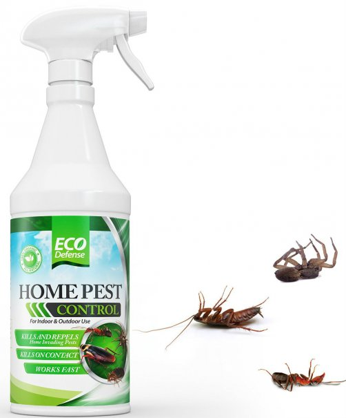 The Eco Defense Organic Home Pest Control Spray Is Made With Safe All Natural Ings It Intended For Both Indoor And Outdoor Use Effective