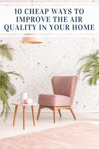 Want to find some cheap ways to improve the air quality in your home? From reducing chemicals, to growing air-purifying plants, improving ventilation and more, here are 10 tips to help you clean the air and improve your health.   #airquality #indoorplants #selfcare