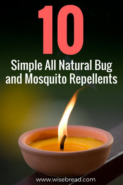 10 Simple All Natural Bug and Mosquito Repellents