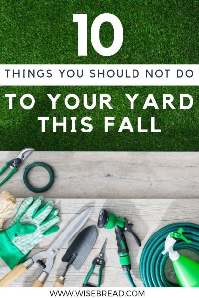 Avoid killing your garden by learning from these common mistakes. From cutting your grass to short, to using the wrong fertilizer, these are the things you need to avoid for your backyard. | #gardening #hometips #lifehacks