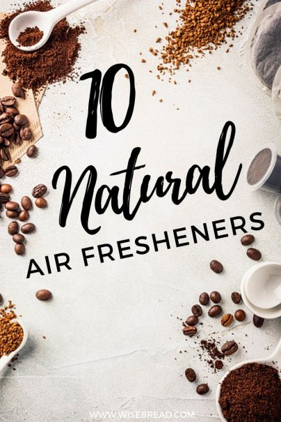 Is your home a little stinky? We've got 10 natural air fresheners that make breathing more bearable. | #DIY #lifehacks #frugaltips