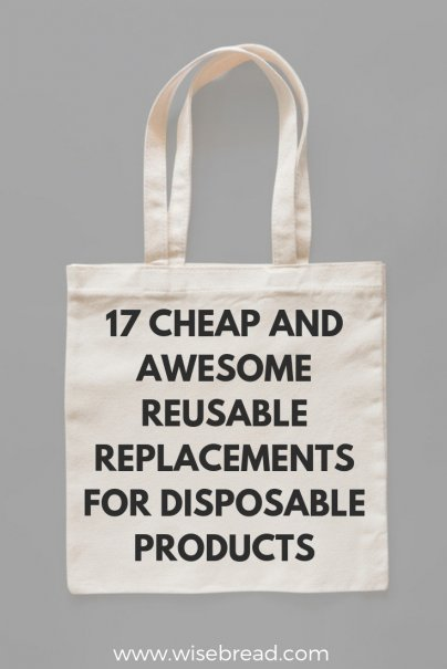 17 Cheap and Awesome Reusable Replacements for Disposable Products
