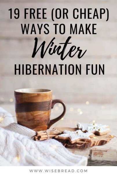 Wild winter weather keeping you cooped up inside? Cabin fever got you down? You're not alone. Here are some cheap or free ways to have fun indoors during the winter. | #winter #winterseason #christmas