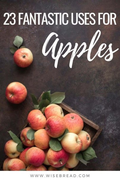 From apple desserts and ciders to potpourri and candles, here are 23 things you can do and make with apples! | #apples #applepie #applerecipes