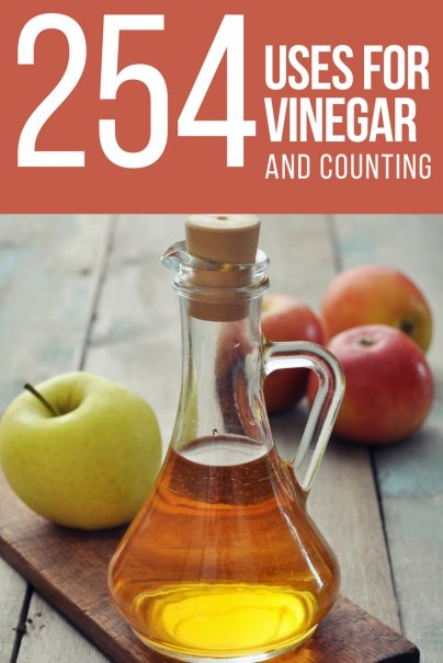 254 Uses for Vinegar  And Counting