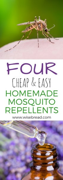 4 Cheap and Easy Homemade Mosquito Repellents