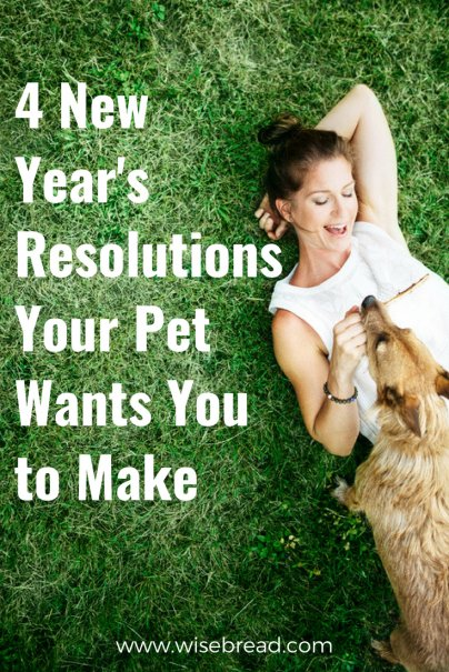 4 New Year's Resolutions Your Pet Wants You to Make