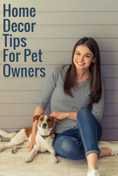 6 Affordable Home Remodel Tips for Pet Owners