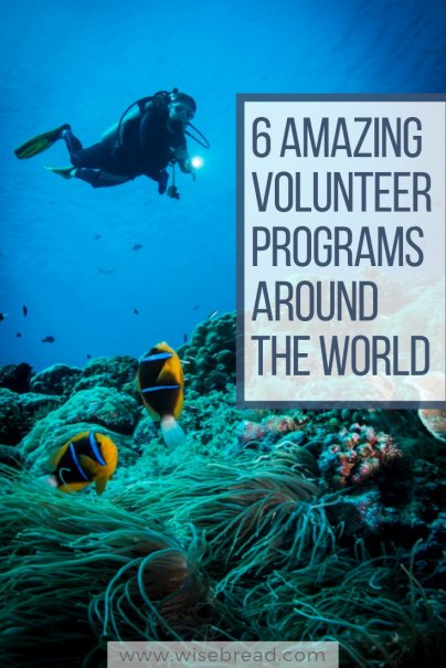 6 Amazing Volunteer Programs Around the World