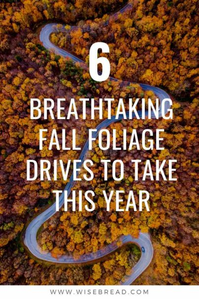 One of the best ways to see the Autumn/fall changes is by going on a fall leaf-viewing road trip across the U.S. We've listed the six best foliage drives throughout the U.S. that are worth checking out this fall! | #traveltips #autumntravel #wanderlust