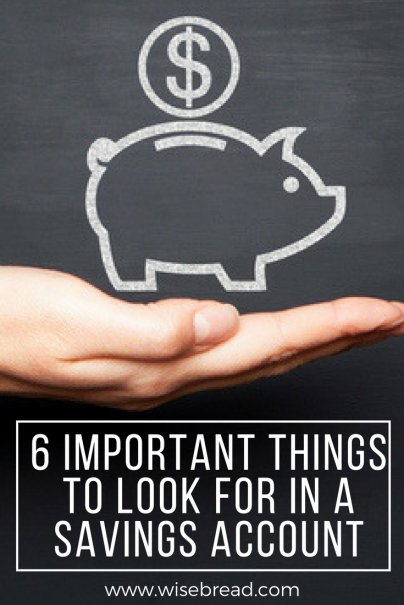 6 Important Things to Look for in a Savings Account