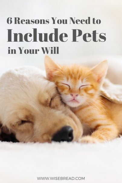 unlike your other personal property, there's good reason to include your pet in your estate plan. Here's why your pet deserves a place in your will. #beneficiaries #inheritance #legal