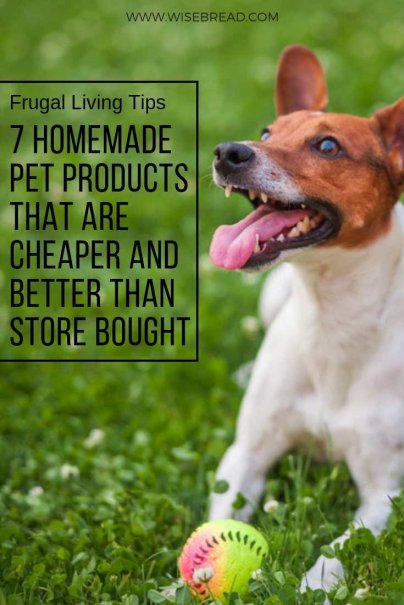 7 Homemade Pet Products That Are Cheaper and Better Than Store Bought