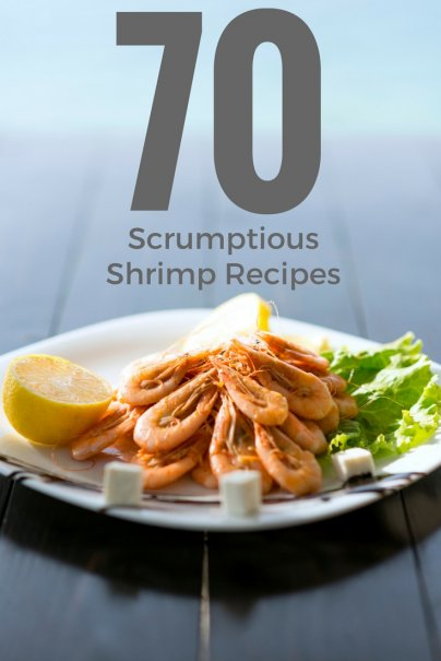 70 Scrumptious Shrimp Recipes
