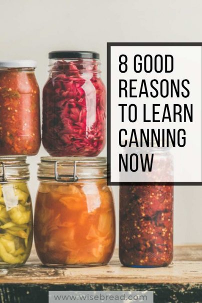 8 Good Reasons to Learn Canning Now