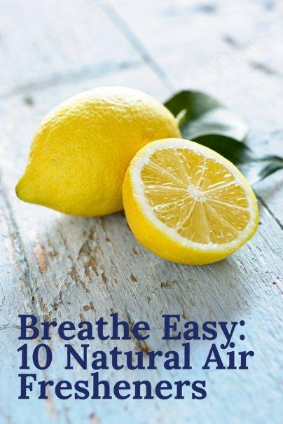 Breathe Easy: 10 Natural Air Fresheners