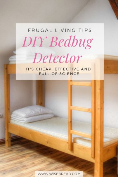 DIY Bedbug Detector Is Cheap and Effective and Full of Science