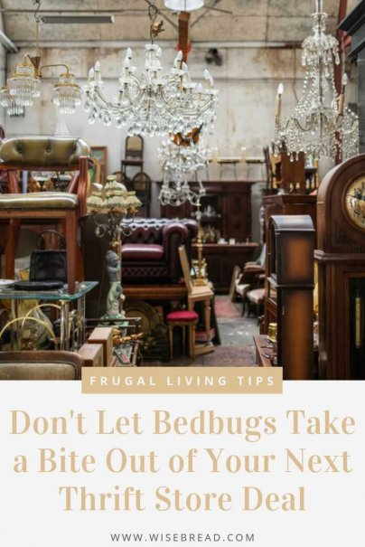 Bedbugs are not only gross, causing nasty itchy bites, they're also insanely expensive to treat once you have them. So before you purchase your next thrift stop find, follow this guide to help you spot those pests before it's too late. | #bedbugs #thriftstore #vintage